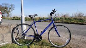 APOLLO CX10 GENTS BICYCLE