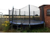 12ft trampoline with surround netting and ladder