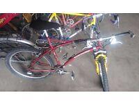 Dutch mountain bike: Gazelle Impulse Dutch MTB