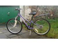 """Girls Apollo xc24 bike age group 7 - 10yrs 12"""" frame £30"""