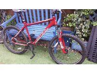 Carrera Centos Mountain Bike