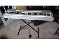 Yamaha P-60S Electronic Weighted Keyboard Piano