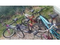 For sale bicycle ladies each 35 £