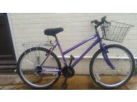 LADIE'S UNIVERSAL WILDTHING MOUNTAIN BIKE WITH BASKET