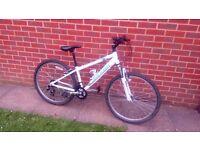 Rayleigh Gritstone Teenage Bicycle