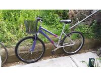 ladies 18 speed lightweight alloy bike,vgc,just serviced,with new basket