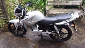 Yamaha YBZ 125, 2011, VERY very low miles, immaculate condition, always garaged.