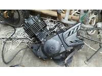 Pulse Adrenaline 125 cc engine