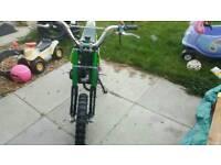 50cc pit bike/ mini moto