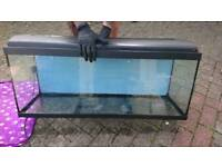 Fish tank with hood and light