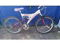 spottless unisex bike £50