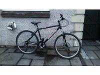 gents barrosa monterrey bike for sale, good condition but 1 flat back tyre