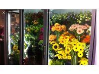 Commercial Fridge cooler - Flower Fridge - Food Fridge