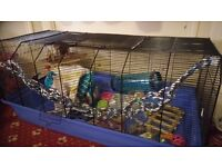 Rat/gerbil/small animal cage large with accessories
