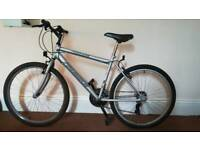 Bicycle sale immediately