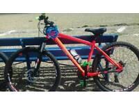 DiamondBack Sync 1.0 Mountain Bike.