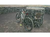 Kona Cindercone mens bike