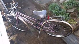 Womens Raleigh Silhouette Bicycle