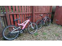 Male and Female mountain bikes