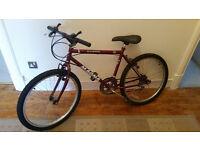 Girl's/Women's bike Ready to use