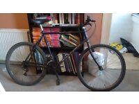 "21"" Raleigh Cyclone 15-speed Mountain Bike"