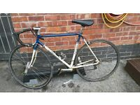 retro ribble reynolds 531 racing bike