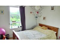Room to rent in Cathcart - available 15th August!
