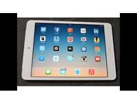 iPad mini immaculate condition