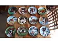 Danbury Mint Boxer dog plate collection