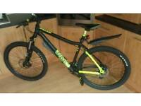 Mountain bike never been used