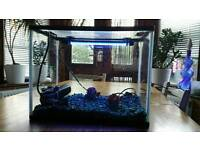 Fish tank with everything including LED light