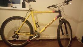 "Giant 21.5"" mountain bike fo sale"