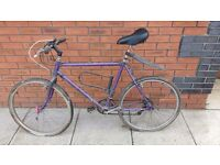 Two mens bikes free to a good home