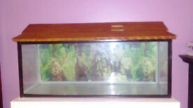 FishTank with Hand made Stand