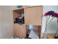 wooden shelving unit with 2 doors