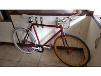 Pitango Custom Single Speed Road Bike