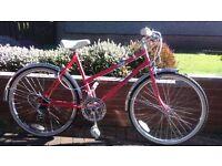 Vintage 80's Challenge Cascade girls / womens bike