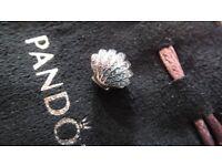 Beautiful Pandora shell charm