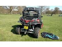 25th anniversary edition Quadzilla buggy road legal for sale year 2015