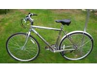 "Falcon Adventurer Gents bike bicycle 21"" frame"