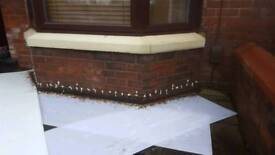Local damp proofing company Manchester