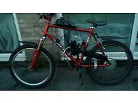 80cc mountain bike and 2 jump bikes open to swaps