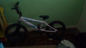 Zinc gravity BMX