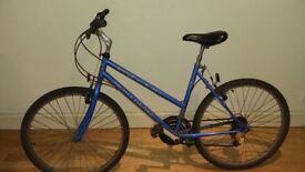 Women Falcon bike