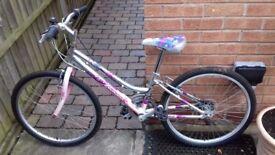 Girls Bike (7 - 12 yrs)