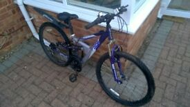 Girls Apollo FS24 Bike