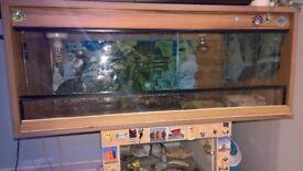 Reptile terrarium / tortoise