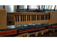 Roland ed 300 midi keyboard