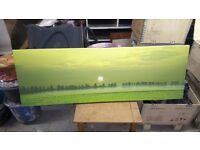 Canvas print trees and sunrise