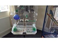 Bird cage.nearly new excellent condition.with bird bath, ladder extra perches.